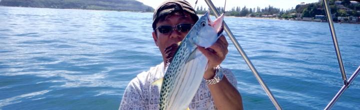 新鮮な魚を使った料理に舌鼓